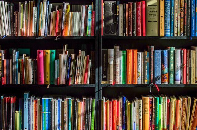 Die Auswahl an Büchern, die das Thema androgyn behandeln, sind eher rar. Aber die Liste wird länger und länger.